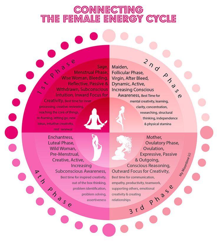 female cycle